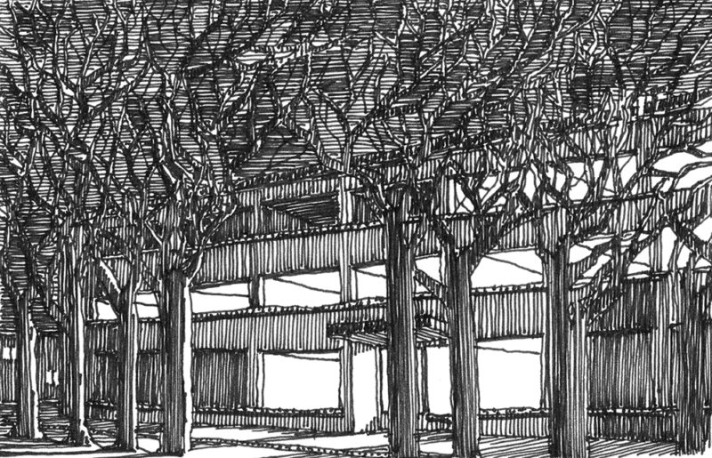 tekeningen, lijn (Vanuit de) Scheveningse Bosjes