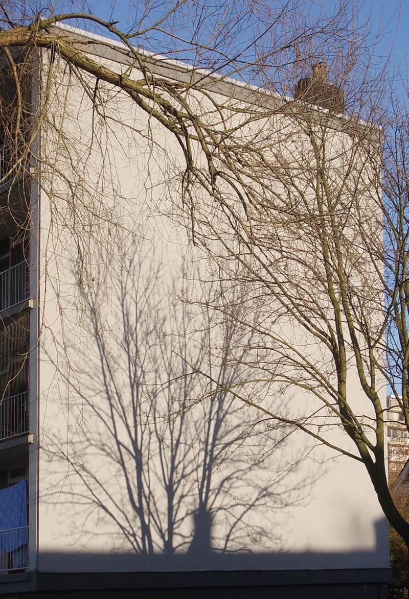 foto's Den Haag zuidwest