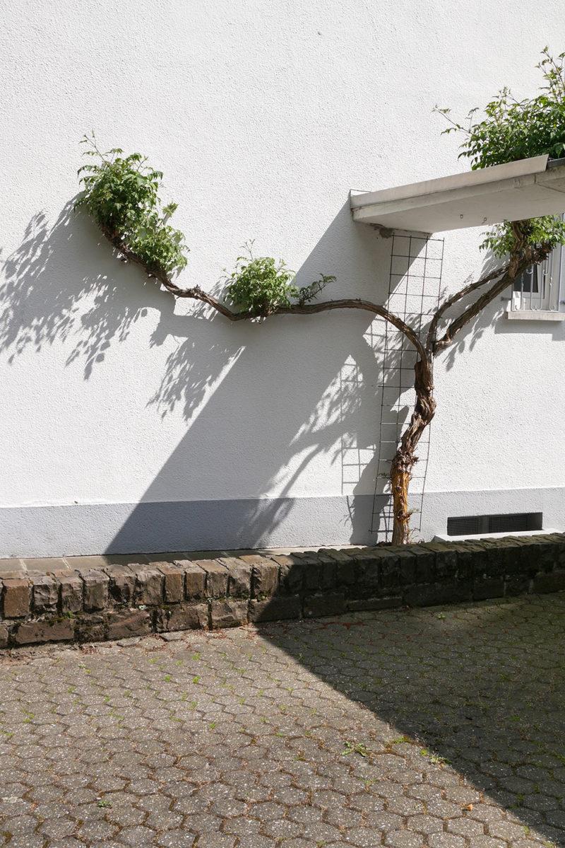 foto's Koblenz, Duitsland